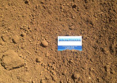 Local Soil