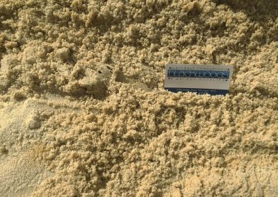 Plaster (Sandpit) Sand