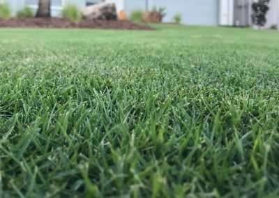 Lilydale Instant Turf & Lawn Solutions Products